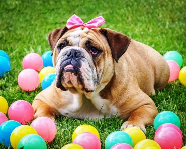 12 Interesting Facts About Bulldogs