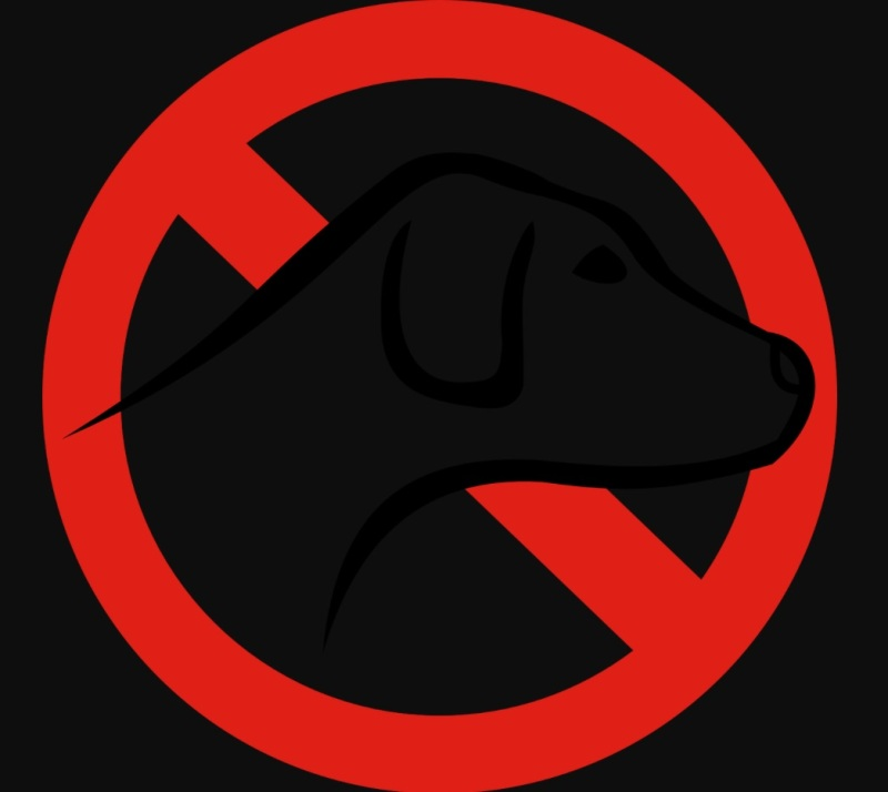 Banned Norway dogs cover