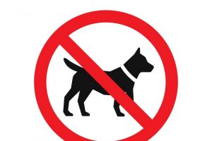 16 Dog Breeds That Are Banned in Germany