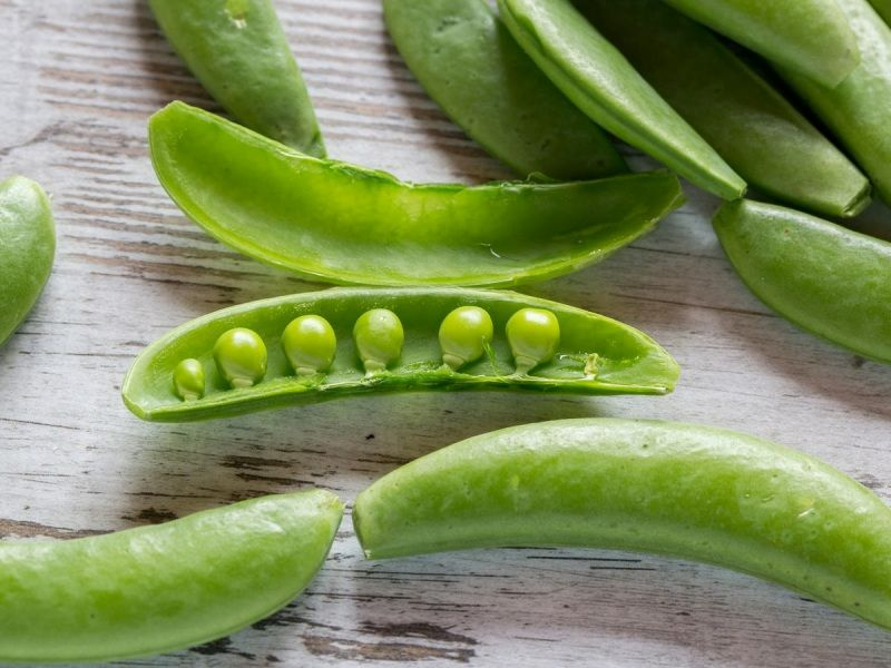 Sugar Peas what they are